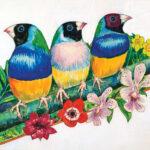 3TWEET Birds300res